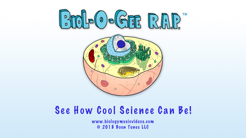 Biologee RAP